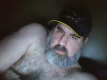 straightbear4you cam show