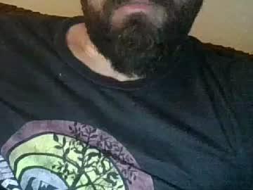 friskifred public webcam